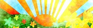 Sunrise for Affinity Numerology est le formulaire d'abonnement gratuit pour les lectures quotidiennes de numérologie personnelle
