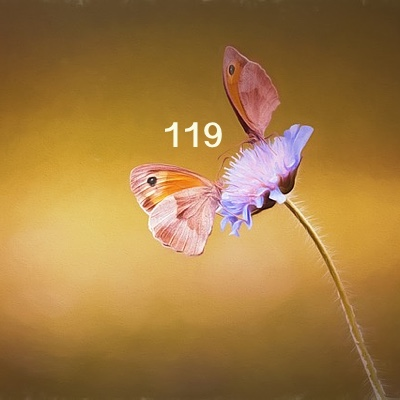 Image for numerology 'Number 119 Meaning' article