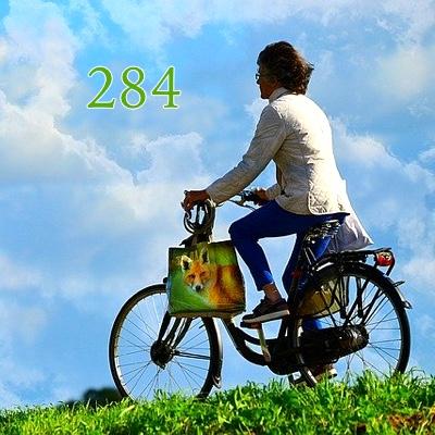 Image pour l'élément de numérologie 'numéro 284 sens'