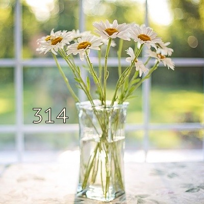 Image pour la numérologie 'numéro 314 signifiant' élément