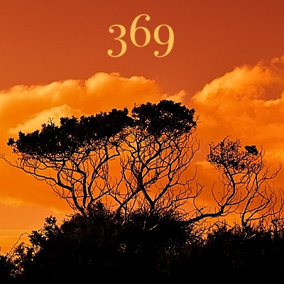 Number 369 Meaning