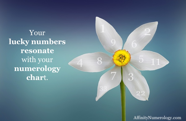 What Are Numerology Lucky Numbers?
